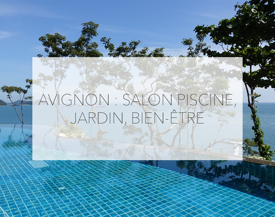 Salon piscine jardin et bien tre avignon mmi d co for Salon du chiot avignon 2017