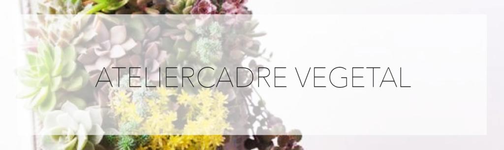 atelier cadre vegetal salon creations savoir faire