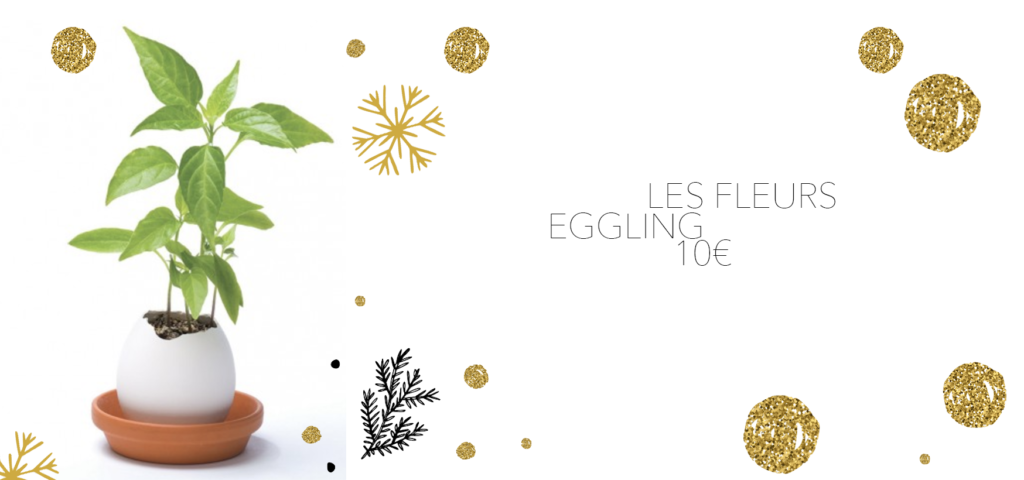 eggling les fleurs