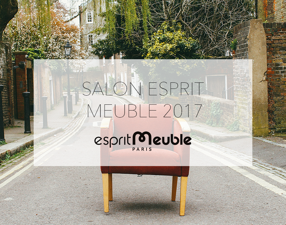 salon esprit meuble 2017 mmi d co. Black Bedroom Furniture Sets. Home Design Ideas