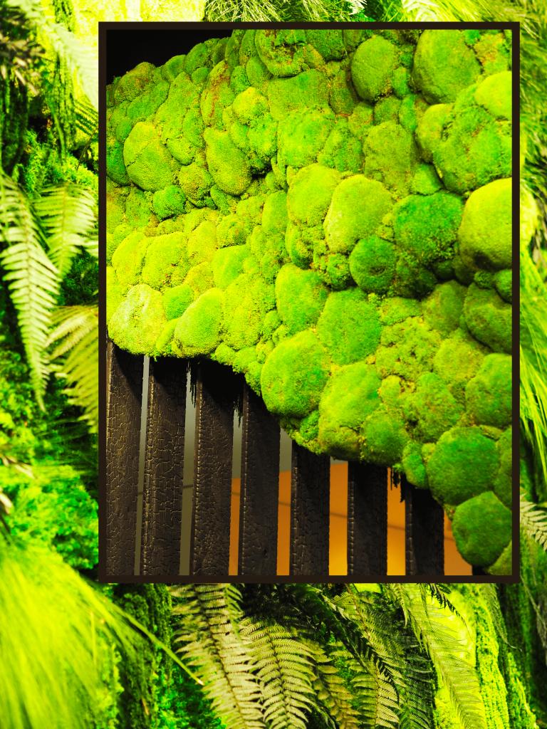 cadre vert maison et objet 2018